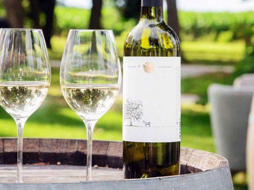 Degustácia vín Château Rúbaň